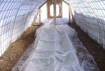 hoophouses & greenhouses