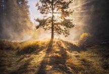 Landscape Photography Inspiration / Favorite Landscape Photography across the globe