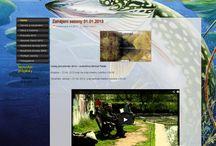 DesignNet - webdesign / www, PHP, webdesin, grafika http://www.designnet.cz