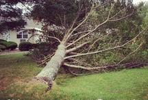 #Hurricane #Sandy