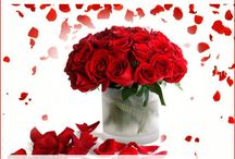 Mother's Day / Send Mother's Day Gifts to Ahmedabad and all over Gujarat