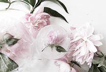 ∙ flowers ∙