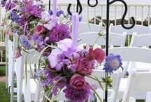 Wedding and venue ideas