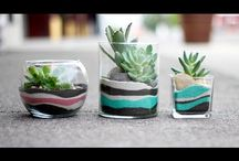 Sand art terrarium
