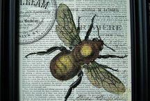 Bee / by Brenda Accornero
