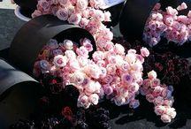 Meet a florist