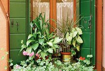 okna s květinami