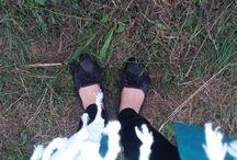 کفشامون  /  our shoes / عکسایی که از کفشامون میگیریم رو بذاریم    لطفا زیر عکسا تاریخشم بذارین:)