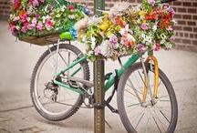 Floral Gems / by Jill Johnson