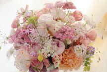 桜ウェディング