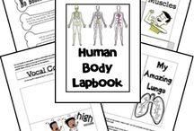 Science - Human Body