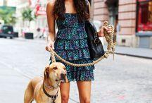 Miejski spacer z psem