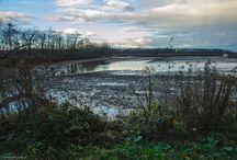 Rezerwat przyrody Łężczok