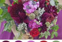 Flower-Color