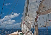 Hitch a yacht / Jachtostop