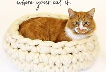 Pets - Cats & Dogs - pampered knits / What a fantastic way to pamper your favourite four-legged family member than with something knitted or crocheted and super cosy? They'll never get out of their bed! Pet beds at their most luxurious.  More on our website www.woolcouturecompany.com