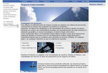 """Grupo Allianz / http://www.allianz.com.mx/ Somos los encargados de hacer la primera versión """"globalizada"""" para Grupo Allianz. Los destacados de este proyecto:"""