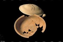 Motifs végétaux / www.images-archeologie.fr