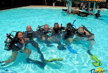 PADI Instructor Development Course / Want to be a PADI Diving Instructor and enjoy the lifestyle. Contact us