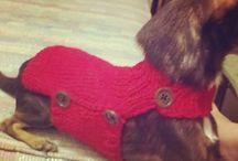 Sadie coats