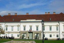 Sàndor Palota Őrség ( Alexander Palace Guard- Hungary)