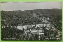 Vykort Kolmården
