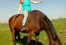 I'm horsewomen