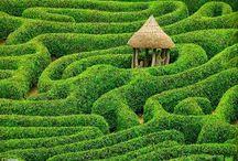Look book Gardens