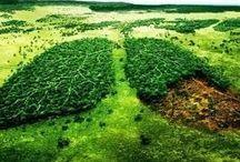 Ambiente / Territori e popolazioni.