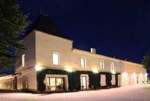 Château Guibeau / Visite du vignoble et des chais au Château Guibeau à Saint Emilion Bordeaux Réservez avec winetourbooking.com