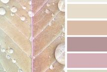 Design Seeds Colour Palettes I love / by Marie Paul
