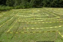 Maze for the kids