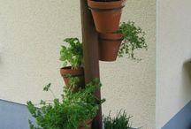 Pflanzen Balkon