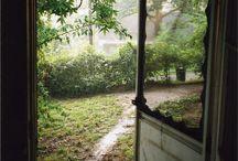 | Garden, Flowers, Orchard |