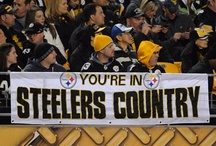 steelers / by Shella Navalaney