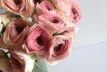 花*flower's