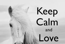 Horses are love♥