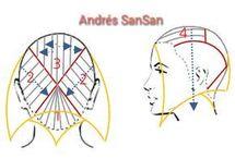 haircut diagram women