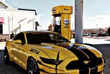 Mustangs <3