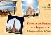 VueIndia Tours