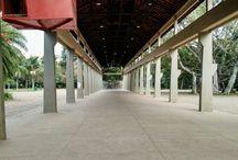 Parque Ibirapuera / São Paulo