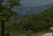 Wanderung im Luberon / Wunderschöner Junitag und bei 34° Grad wandern. Die Wanderwege in der Provence sind manchmal sehr steinig. Kilometer um Kilometer, sieht man doch ganz gut. Aber, wir wurden mit einer fantastischen Aussicht über den Luberon belohnt.   Und auf dem Rückweg zeigte sich dieser Schmetterling, der mir dann als Modell zur Verfügung stand. Leider weiß ich nicht, um welchen Schmetterling es sich hier handelt.  Weiß es einer von Euch?
