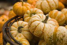 Fall / Fabulous Fall!