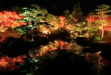 L'automne - Aki 秋