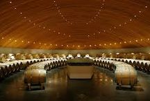 WAW Wine cellars / Wine cellar inspiration