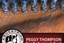 Horse Show Preparation / Prepping yourself or your horse for horse shows or other equestrian competitions. Braiding, grooming, hoof care, mane designs. Horsemanship. Lots of helpful information.