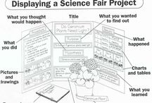 Chase's Science Fair / by Jessica Johnson
