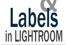 Labels and Logos / How to use photo programs to create logos and labels / by Jane Spivey