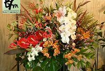 開店、お祝いスタンド花 / お店の開店やパーティーに使用する スタンド花達です。