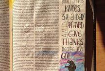 Daniel Bible Journaling